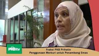 Rapat Komisi VII, Peggi: FPKB Prihatin Pemakaian Merkuri untuk Penambang Emas